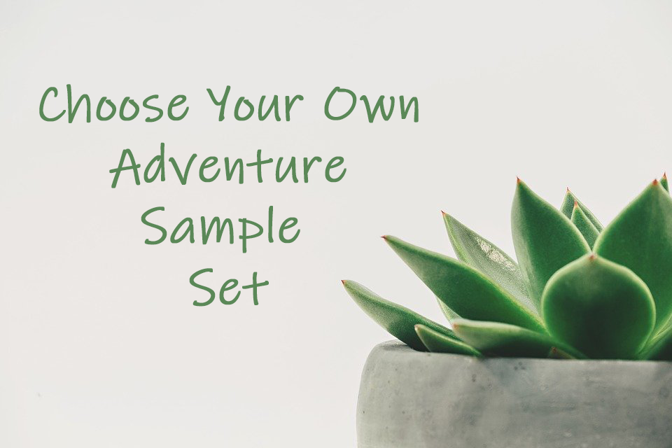 Choose Your Own Adventure Sample Set