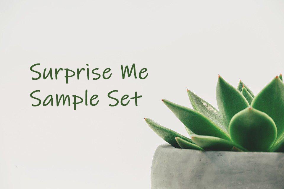 Suprise Me Sample Set